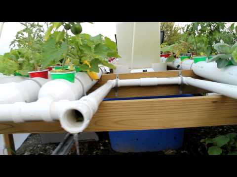 Solar powered aquaponics hoosier garden Part 3 of 3
