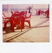 Integral Color Film/ ISO 640 Softtone Paul Giambarba Edition POLAROID Type 1200