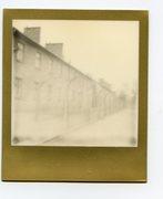 Auschwitz Birkenau serie moto per luogo
