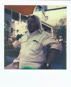 Polaroid 14