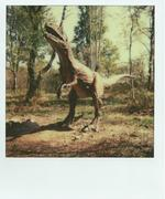 25/04/13 - Zoo Safary - Parco Giurassico
