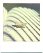 origami #3