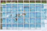 Julio Swimming