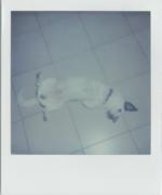 PolaroidBilly