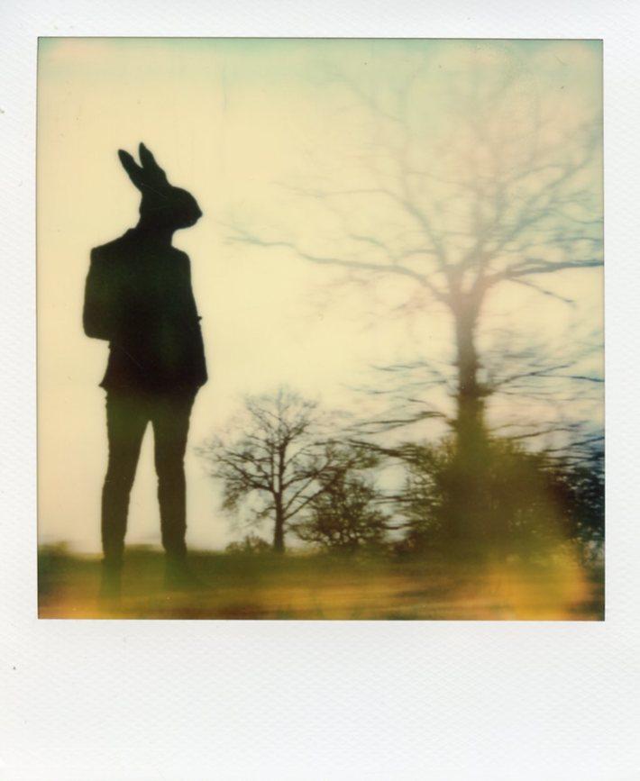 06 Roundabout Rabbit
