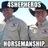 4Shepherds Horsemanship