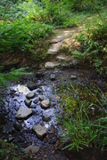 Woodbrooke Stepping Stones