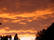 Sunset in Culver City - November 2012
