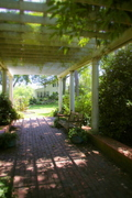 under the shaded arbor