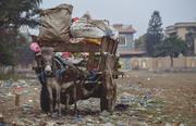 The Garbage Donkey