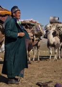 Camel Caravan 3
