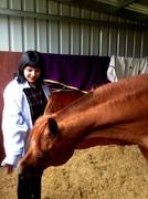 Me and 'Heir of Marwan', the prized stallion!