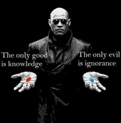 You choose blue or red pill