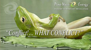 ConflictResolution_WhatConflict