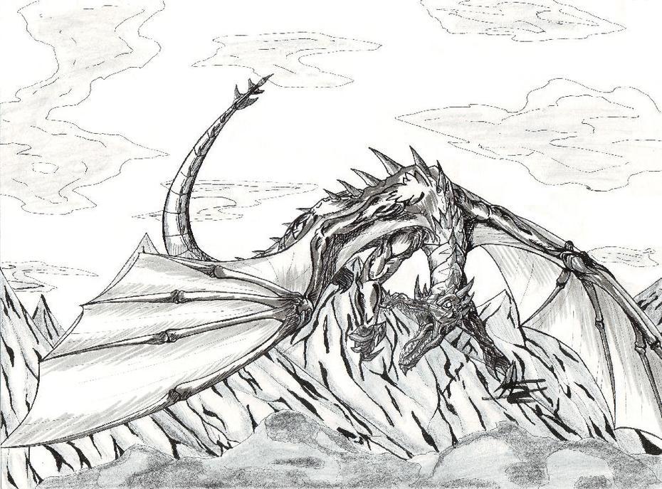 Bergs drake