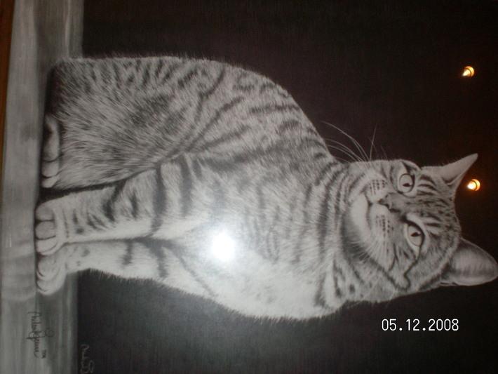 Katt i blyerts