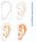 Teckna öron