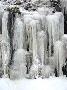Frozen In Motion