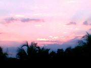 Sunny Evening
