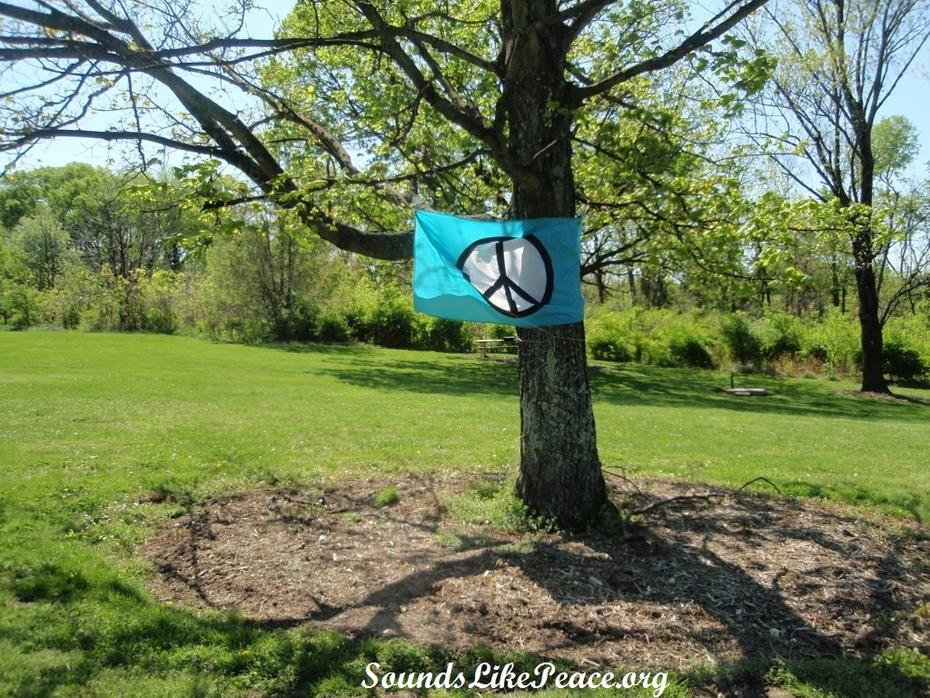 Peace sign flag tree MFP French Park 8 Apr 2012 comp url
