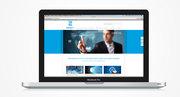 Website/huisstijl Zuiver ICT