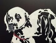 Dalmatians dogs