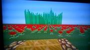 Minecraft Emerald City