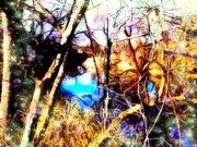 AuSable Bayou Enchantment ~ JV