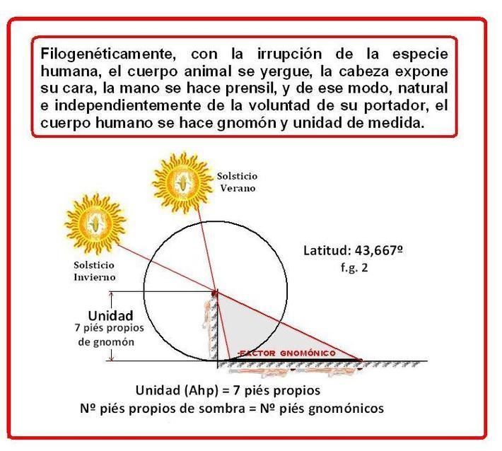 factor gnomónico y pié gnomónico-2