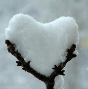 snow heart from Julie Ahasay