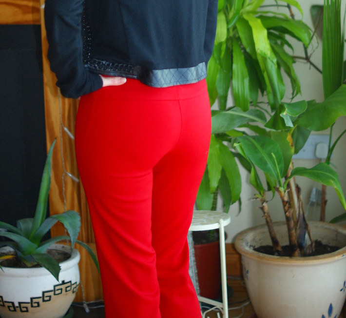 The Scarlet Pants