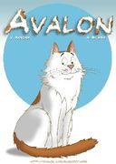 Avalon Cat Cartoon