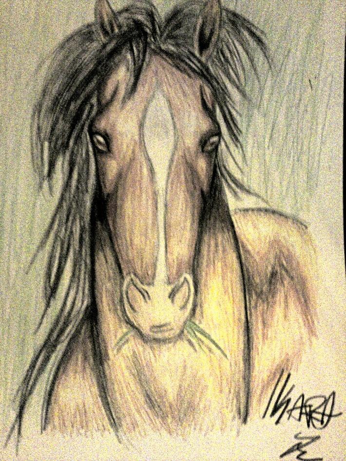 Pigg häst (redigerad ljusstyrka)