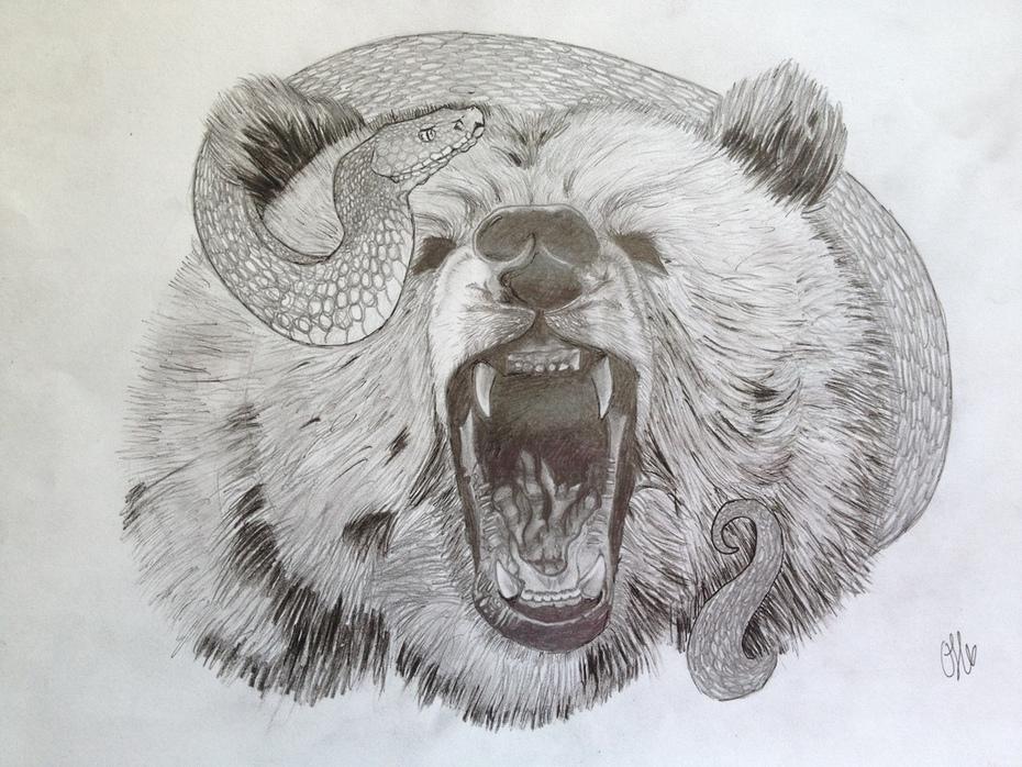 björn & huggorm -> Grizzly bear and Wiper - klar