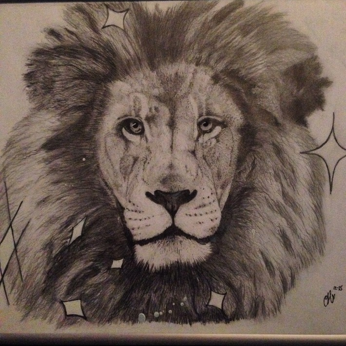 Lion, lejon