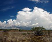 Summer storm clouds over Nine Mile Pond trail