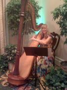 Harpist for Walt Disney World Event