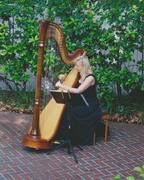 Harpist Victoria Lynn Schultz