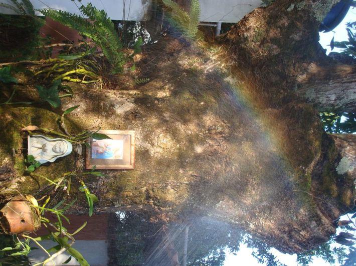 Nossa Senhora do Arco Iris