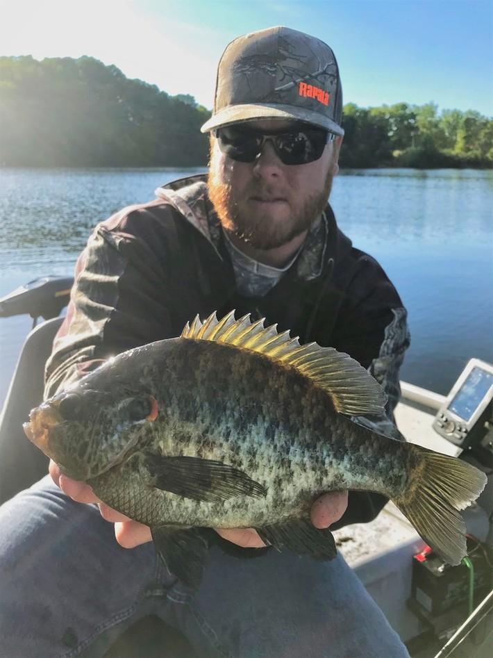 10'' Redear Sunfish (6-14-19)