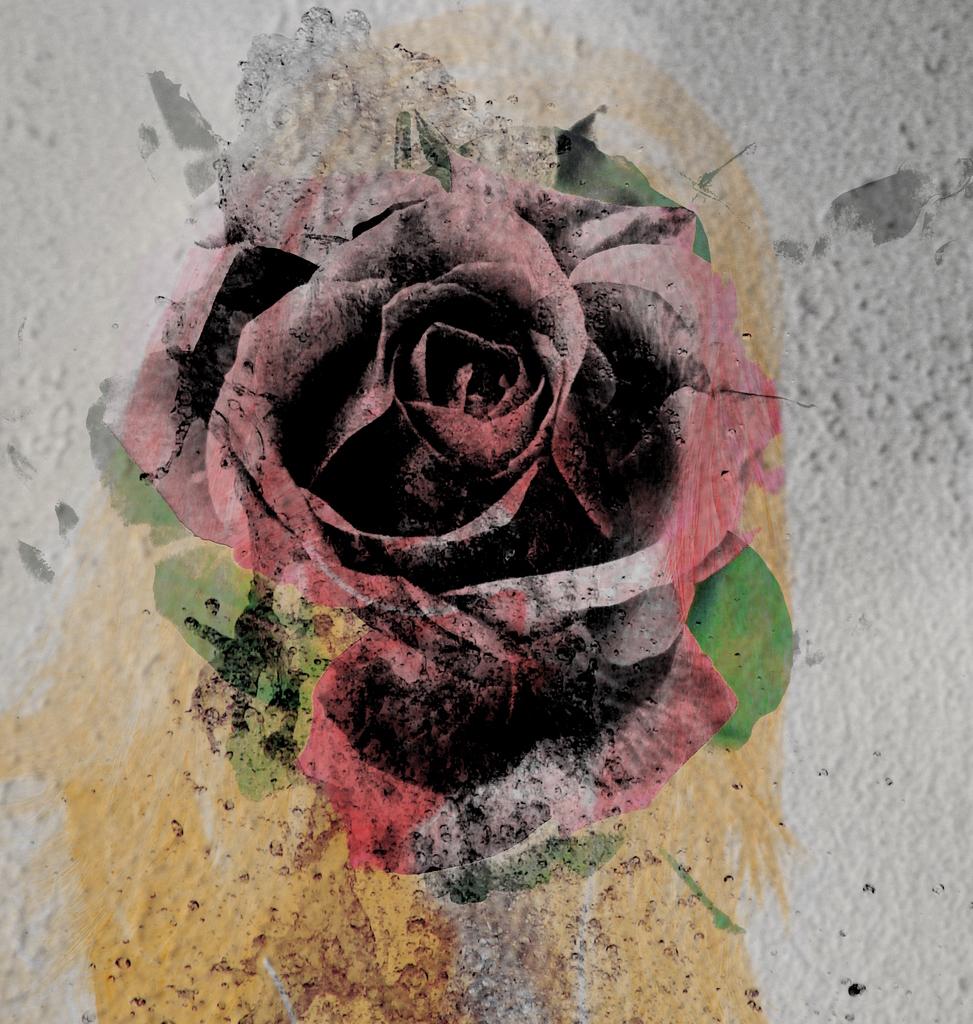 La Rose Grise