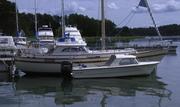 MS33+Fjordling
