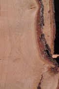 Доска необрезная дубовая