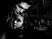 Twilight Fans