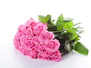 bouquet-of-pink-roses-high-definition-flower