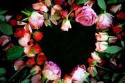 Feridos de Amor