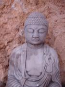 BUDDHIST CHAPLAINCY