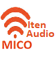 Critical Thinking for MICO Teachers Audio Program