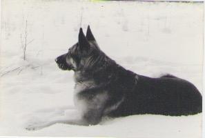 5.24 MISSY NAOMI [1989 - 2004]