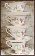 The Ladies' Society of Tea and Corsets